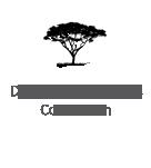 Development Experts Consortium Logo